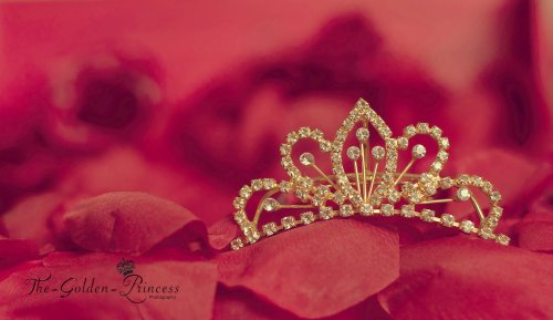 princess___crown____by_the_golden_princess-d4p8rbe