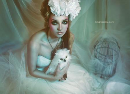 Dead Romance IV by Amanda-Diaz
