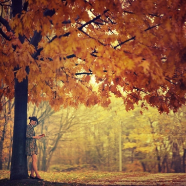 ___autumn_by_oprisco