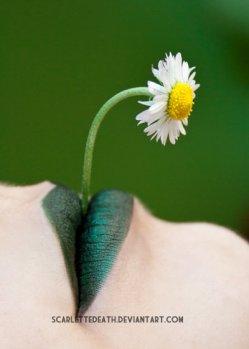 personal_garden_by_scarlettedeath