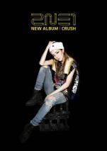 2NE1 Crush Album (2)